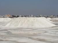 مؤسسة الملح بعدن تستأنف أنتاج الملح بعد توقف دام سنتين