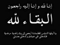 مدير مكتب التربية والتعليم بخنفر يعزي الدكتور سالم ناصر جابر بوفاة شقيقه